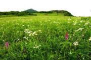 百花山自然保护区